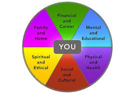 Image result for wheel of life